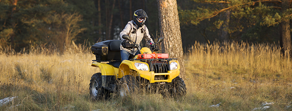 Horizontal action shot of a man in helmet and safety goggles riding quad bike with snowy autumn forest in the background.